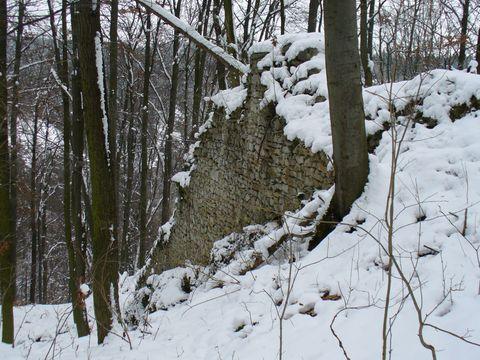 zbytky hradu Blansek