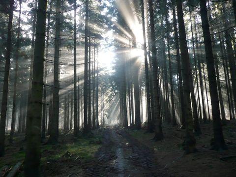 v kraji pod Javořicí vstává slunce