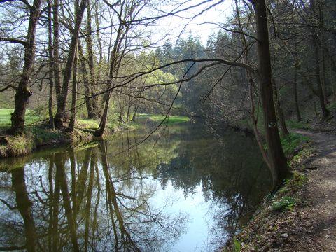 řeka Blanice v zámeckém parku