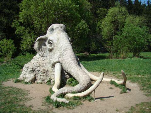 mamut pod Rozstípenou skálou