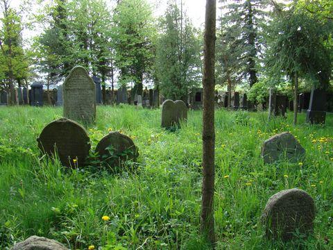 zidovský hřbitov v Kasejovicích