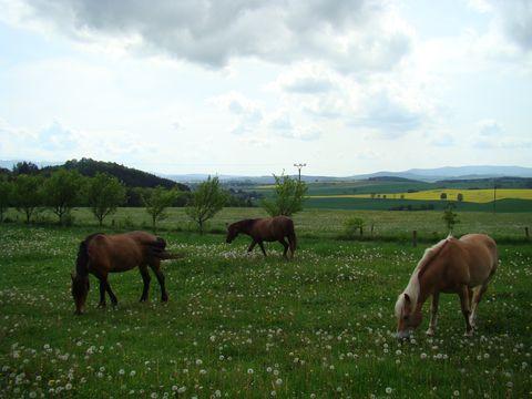 výhled do Vserubského průsmyku