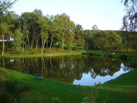 rybník u Daliborky
