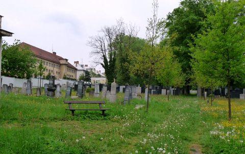 zidovský hřbitov v Jihlavě
