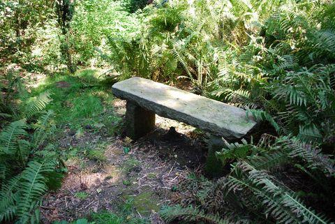letní lavička v petrkovské zahradě