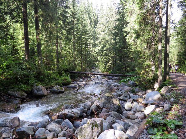 Meďodolský potok pramení západně od Kopského sedla ve výšce 1660 metrů
