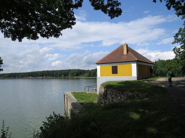 rybník Dvořiště