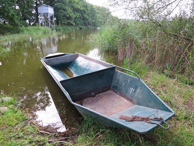krmení ryb na rybníku Kaclířov