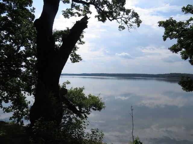 Rožmberk je s rozlohou 674 ha největším rybníkem v ČR
