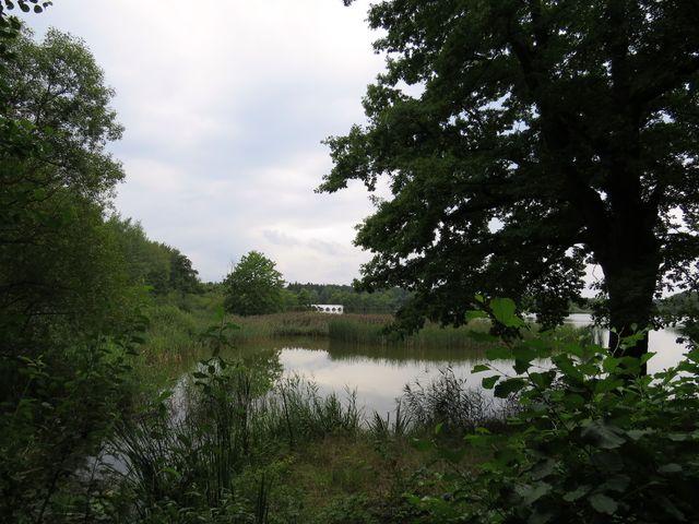záplavový most u rybníka Vítek