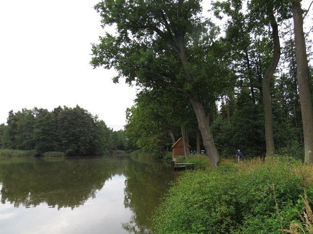 romantická stezka po hrázích rybníků nás vede do Třeboně