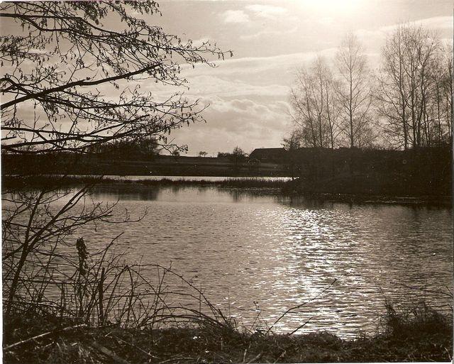 rybník u Záhorkovic