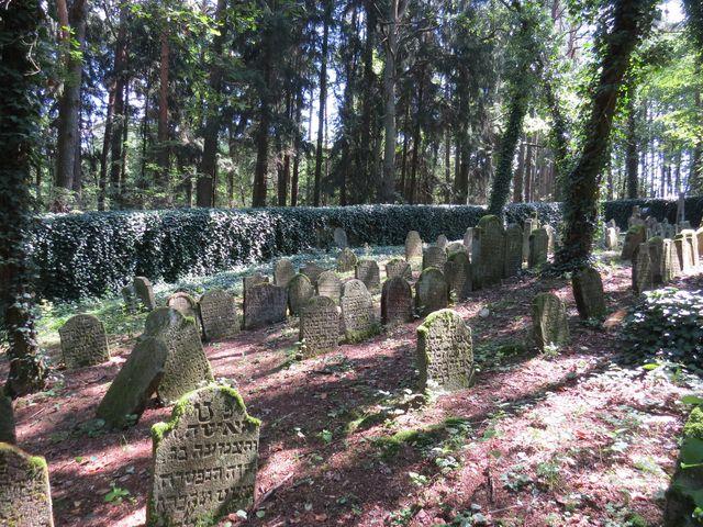 židovský hřbitov ze začátku 18. století; www.svatosi.cz