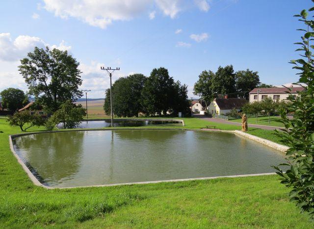 u návesních rybníků ve Štěpkově pokuřuje hastrman