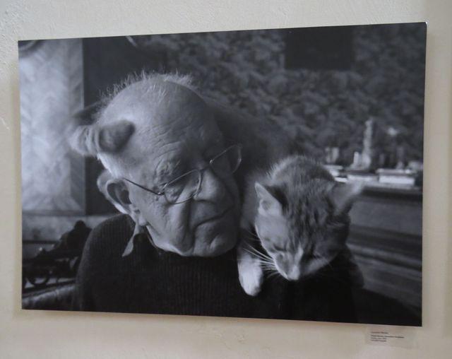 """na výstavě byla i fotografie Františka Nárovce, kterou bych nazvala """"Daniel korunován"""""""