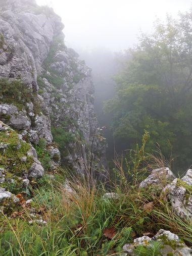 Havraní skála v mlze; foto I. Svobodová