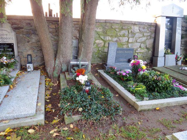 hrob J. Hrona v Častrově