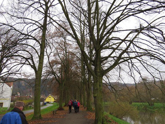 cesta kolem řeky ke studánce
