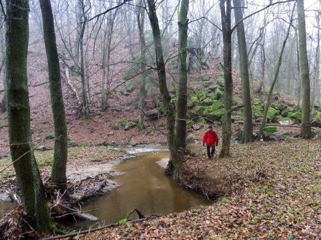 údolí Nedveky pod Bukovinou