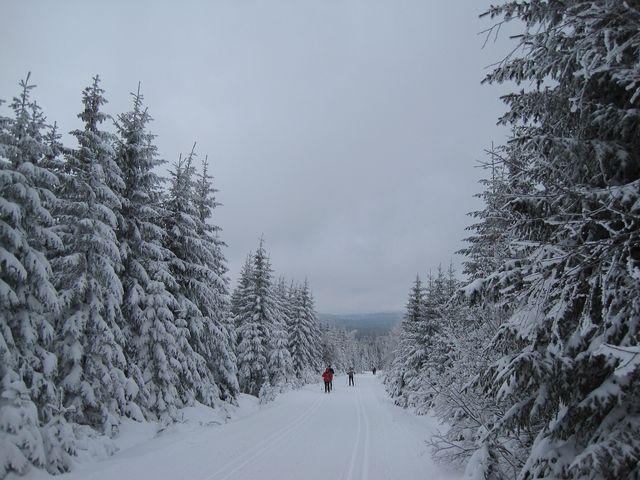 zimní pohádka na Černé hoře