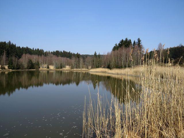 rybník Mikšovec