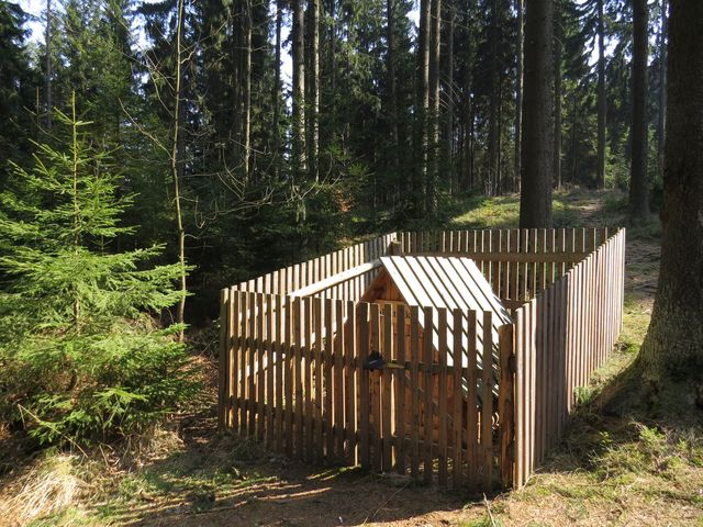 studánka Salvátorka v Pilském lese