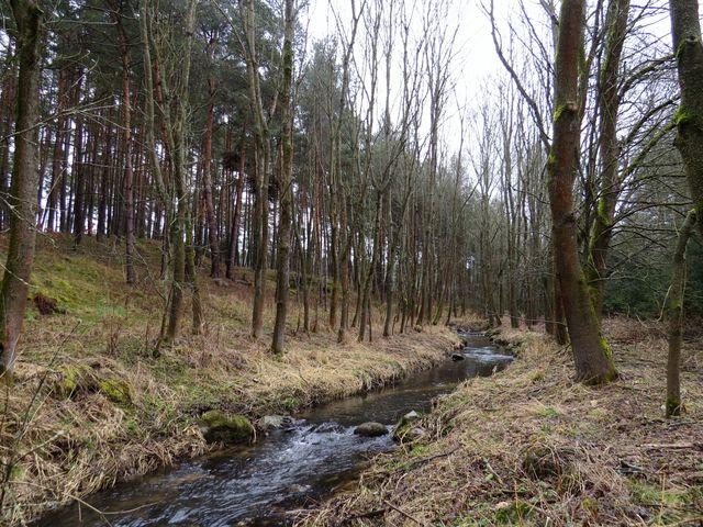 potok Polomina