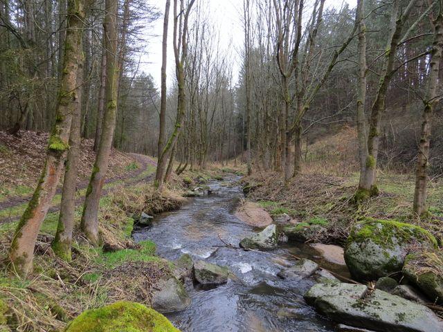 dříce se potoku říkalo Polomí