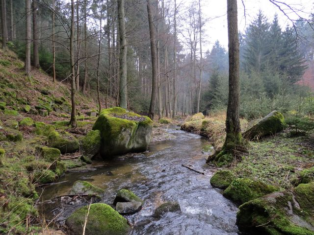 romantické údolí milovali básníci Březina a Deml