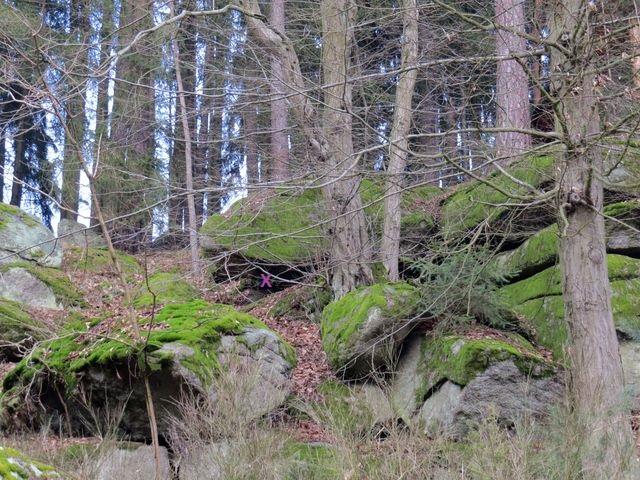 pod označeným kamenem byl nalezen poklad; www.svatosi.cz