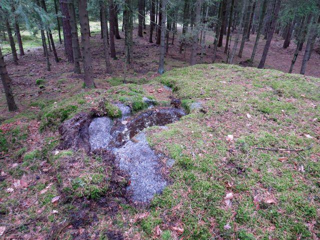 jeden z kolomazných kamenů v lesích u Kamenné