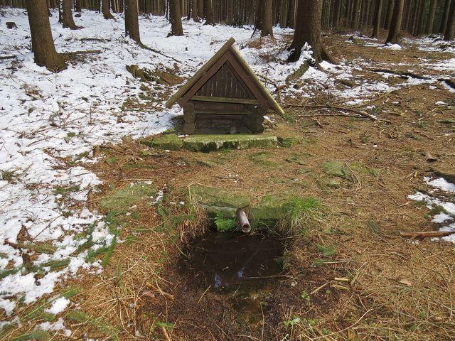 Dědkova studánka pod vrcholem Dědkovské hory