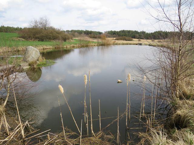 nový rybník zdobí krajinu