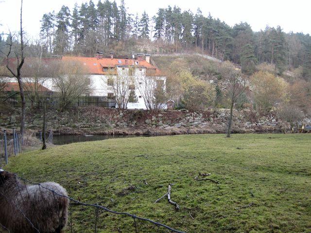 Holomkův mlýn u Oslavy je obehnán kamennými zídkami a ploty, takže přístup ke zřícenině hradu Dub na ostrohu nad ohbím řeky je téměř nemožný