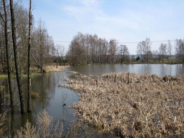 Lomové rybníky u Hlinska