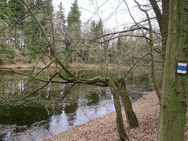 turistické značení u třešťských rybníčků
