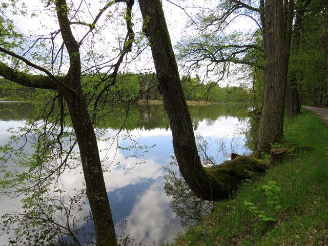 projížďka kolem rybníků poblíž Chlumu u Třeboně; www.svatosi.cz