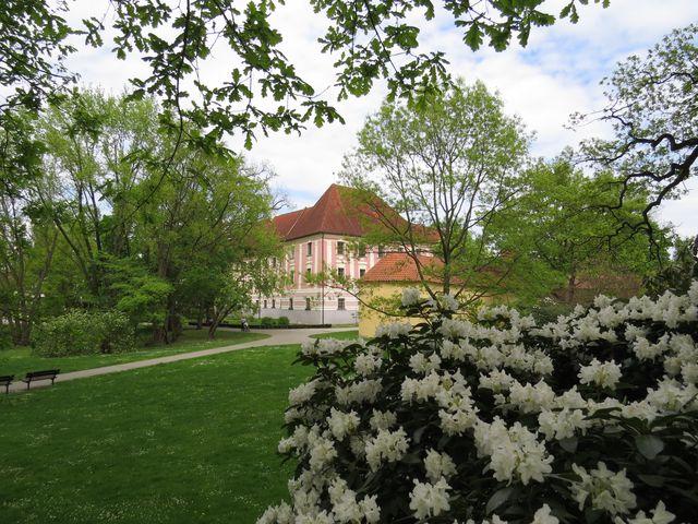 zámecký park v Třeboni