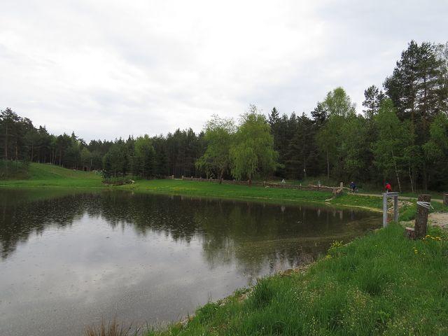 jen rybník zůstal z vesnice Nové Mlýny