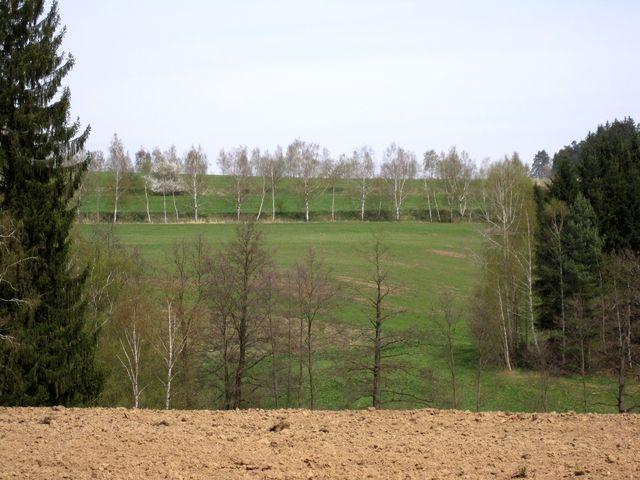 jarní krajina u Věžničky