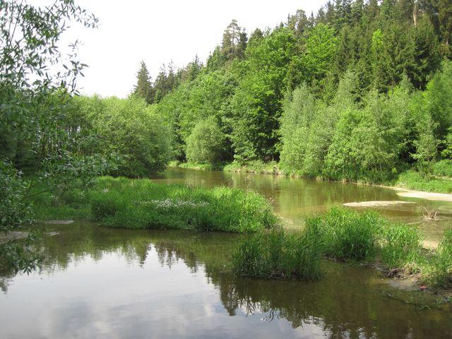 okraj rybníka Peklo - sem se vlévá Zhořský potok