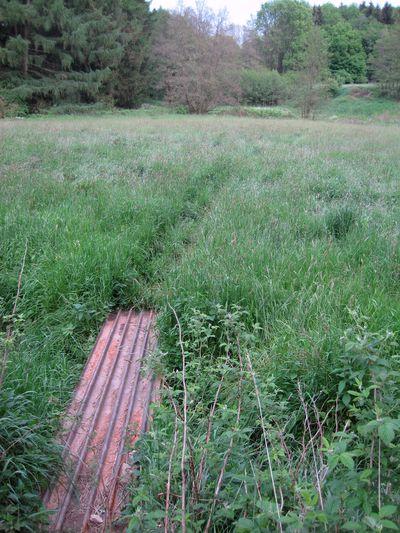 trasa značené cesty podél Ochozského potoka vede zčásti orientačně náročným terénem