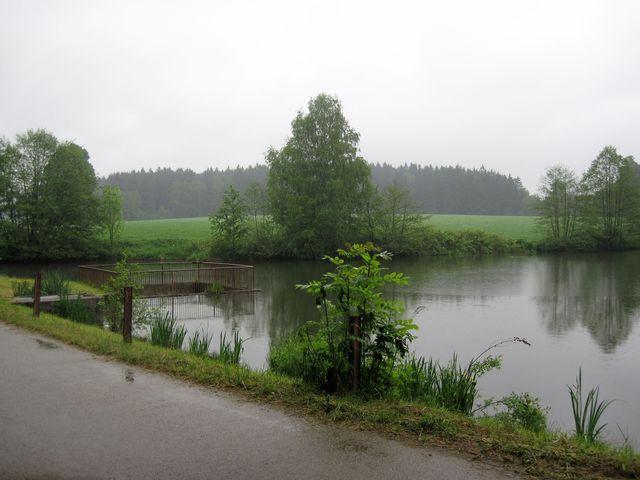 rybník Čihadlo za deště