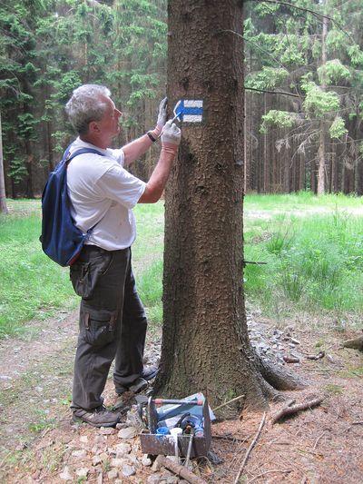 stezka vede lesem, je na ní tedy spousta značek