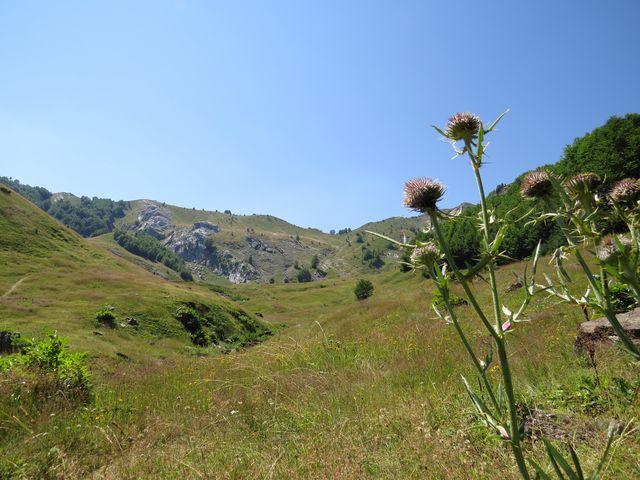 podnikneme výstup na kopce lemující toto údolí