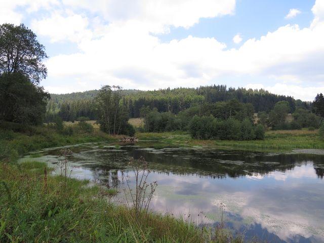 rybník nad Uhlíkovem