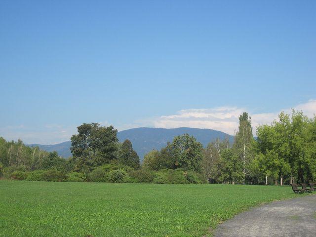 výhled na hřeben Krušných hor