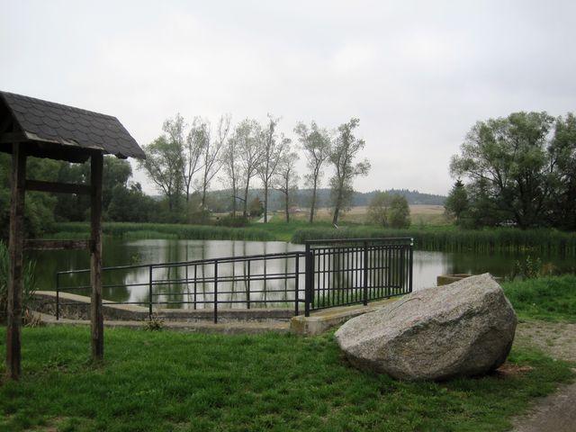Týnský rybník