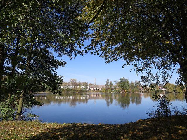 Bránský rybník