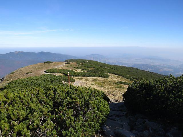 stezka po hřebeni - Gówniak (1 617 m)